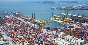 Dubai Import Export