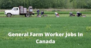General Farm Worker Jobs In Canada